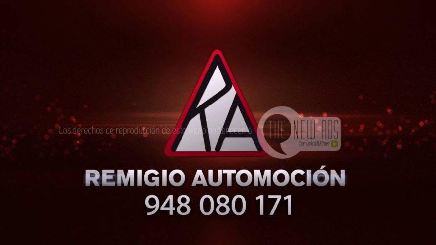 remigio-automocion